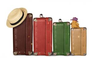 Lineabio360-valigia vacanza