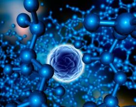 lineabio360-autoimmuni-malattie