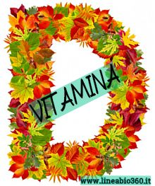 vitamina-D-lineabio360