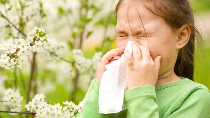 allergia primavera cure
