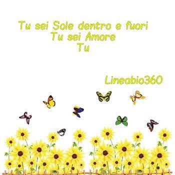 girasole-lineabio360